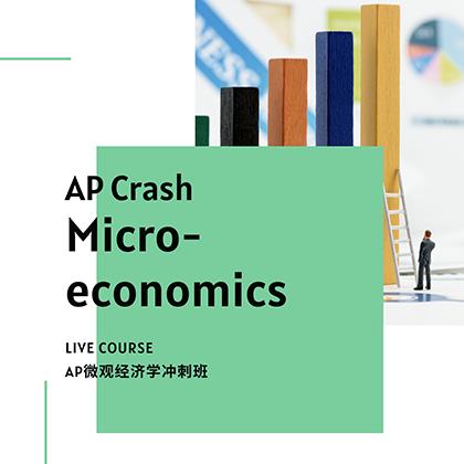AP Crash Micro Economics